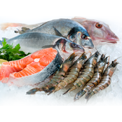 packaging-solutions-for-seafood-and-fish